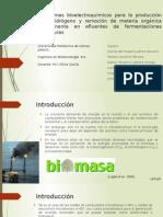 Sistemas Bioelectroquímicos Para La Producción de Hidrógeno y