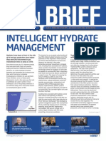 Spt Intelligent Hydrate Management Article Gpa in Brief August 2015