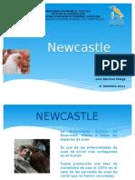 Newcastle.pptx