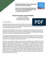 Guia de Preparacion - ECOSOC