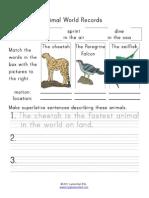 Fastest Animals