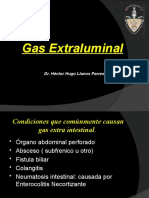 Gas Extraluminal