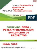 7b Formulacion y Evaluacion de Proyectos (1)