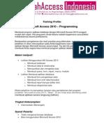 MS Access Programming