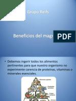 Grupo Reifs| Beneficios Del Magnesio