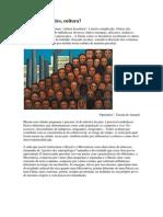 Cultura Brasileira Primeiras Questões
