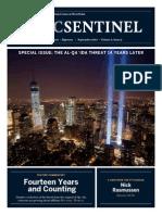 Ctc Sentinel 8 918