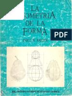 La Geometria de La Forma