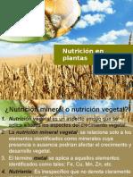 6. Nutrición Vegetal