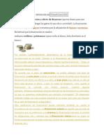 Definición Definanciación.docx Borrador