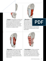 GranLibro.abdominales.sportlife179 Marzo2014 Página 05