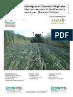 Synthèse Essai Services écosystémiques et couverts végétaux