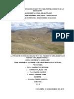 Informe de Yacimientos Mineral i