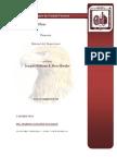 manual-del-supervisor-de-obras.pdf