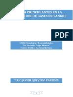 Conocimiento Basico Para La Interpretacion de La Determinacion de Gases en Sangre (Autoguardado)