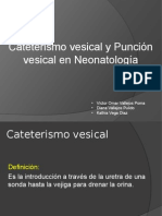 Puncion y Cateterismo Vesical