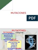 7 y 8. Tipos de Mutaciones