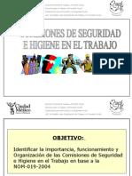 Comisiones de Seg. e HIgiene.pp