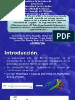 Protozoologia 1