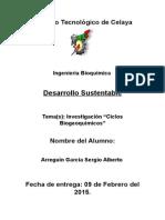 Ciclos Biogeoquimicos Investigacion