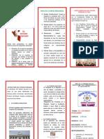 Triptico Estado Peruano