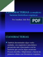 Cianobacterias Cardona y Cano