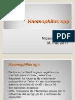 c 15 Haemophilus