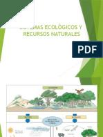 1.-SISTEMAS-ECOLOGICOS
