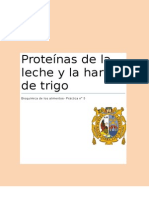 informe bioquimica pan trigo