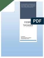 Medicamentos para la patologia de la fiebre tifoidea