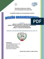DISEÑO ORGANIZACIONAL 100%