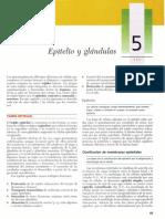 Gartner, Leslie P. - Texto Atlas de Histologia, 2da Edición [5 Epitelio y Glándulas] (1)