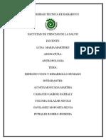 ANTROPOLOGIA grupo 6.docx