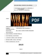 AHUMADO-PESQUERA (1).docx
