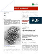 Virus de La Hepatitis 4C