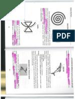 Dictionar de Simboluri -I I