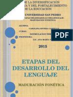 ETAPAS DEL DESARROLLO DEL LENGUAJE prelinguistica.pptx