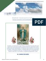 El Camino de Maria . Edicion 950. Nuestra Senora de La Medalla Milagrosa