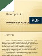 Protein Dan Karbohidrat