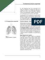 01 - Fundamentos Del Aire Comprimido 1 -13