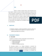 curado DE  CARNES.docx