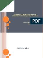 Seminário Fisiologia Vegetal - Manganês e Enxofre