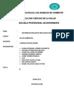 Informe de Trabajo de Salud Ambiental.