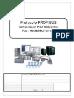 profis.pdf