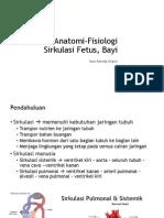 Perubahan Anatomi-Fisiologi Sirkulasi Fetus, Bayi