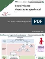 6_ SEGUIMIENTO de CASOS (Embarazadas y Perinatal)