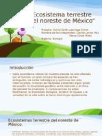 Ecosistema Terrestre Del Noreste de México
