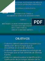 AISLAMIENTO  DE  HONGOS