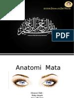 Anatomi Mata Segmen Anterior