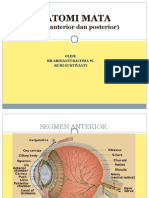 Anatomi Mata Segmen Posterior - Copy